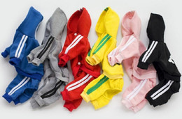 Wholesale dhl cotton jacket for sale - Group buy DHL designer pet dog clothes Winter Warm Pet Dog Jacket Coat Puppy Clothing Hoodies For Small Medium Dogs Puppy Yorkshire Outfit