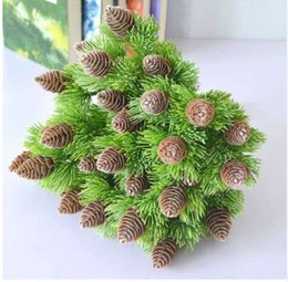 Live Xmas Trees Nz Buy New Live Xmas Trees Online From Best