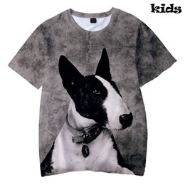Wholesale Bull Terrier D Print Fashion Basic Cool Popular Kids T shirt casual comfortable Short Sleeve Summer Boys Girls T shirt kpop