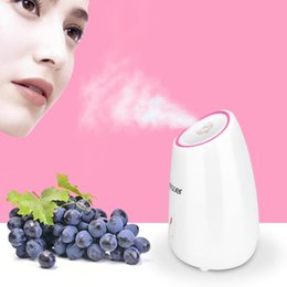 steamer facial Australia - Nano Fruit Facial Steamer Hot Mist Steam Sprayer SPA Moisturizing Face Humidifier Deep Cleansing Skin Care Beauty Instrument T191029