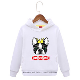 China Children's Clothes 2019 Spring Fashion Belt Caps In Children Pure Long Sleeves Colors Cartoon Boys Brand Hoodie Dog Kids suppliers