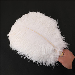 "Feather Packing Australia - Pack of 100 pcs Natural Ostrich Feathers 14~16"" (35-40 cm) for DIY Craft Home Wedding Party Decoration Women Cloth Accessories Party Supplie"