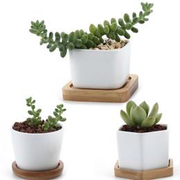 Pots Home Australia - Ceramic Hexagon Succulent maceta bonsai pot Cactus Planter Pots with free Bamboo Tray for Home Decoration