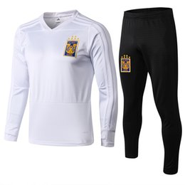 e395fdb90 18 19 Mexico club Tigres UANL soccer jersey 6 Stars 2018 2019 GIGNAC Vargas  H. Ayala 3RD away blue football Training suit jacket set