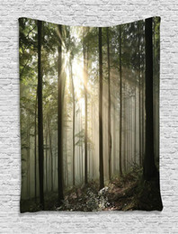 Sunrise Decor NZ - Farm House Decor Collection Sunrise in the Early Autumn Deciduous Forest Wild Woodland Seasonal Picture Bedroom Living Room Dorm