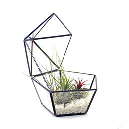 China Pentagon Shape Succulent Display Planter with Swing Lid Modern Geometric Glass Terrarium Artistic Jewelry Storage Box suppliers