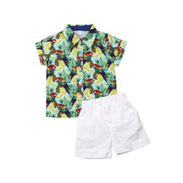 $enCountryForm.capitalKeyWord UK - Baby Boy Outfits Clothes green parrot T-shirt+ white short Pants 2PCS Set party Kids Clothing Cute Boutique