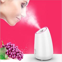 $enCountryForm.capitalKeyWord Australia - Facial Steamer Diy Fruit Steam Sprayer Beauty Machine Nano Ionic Mist Face Humidifier Sauna Facial Moisturizing Pore Cleansing
