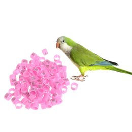 Shop Pigeon Rings UK | Pigeon Rings free delivery to UK | Dhgate UK