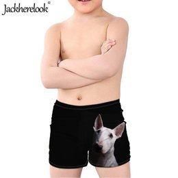 Wholesale Jackherelook Bull Terrier D Print Black Trunks Kids Boys Fashion Summer Sports Surfing Shorts Children Leisure Swimwear Bottom