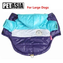 $enCountryForm.capitalKeyWord NZ - PETASIA Winter Pet Dog Clothes For Large Dogs Striped Solid Pattern Thick Waterproof Down Jacket Coat For Big Dogs 6XL C18112201