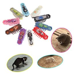 $enCountryForm.capitalKeyWord Australia - 10 Pcs Hexbug Electronic Pet Educational Robotic Insect For Baby Interactive Toys Hex Bug Worm Fighting Insects Reptiles Q190523