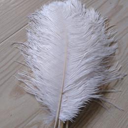 $enCountryForm.capitalKeyWord Australia - wholesale 200pcs lot 10-12inch Ostrich Feather Plume white,Wedding centerpieces table centerpiece decor party event decor z134A