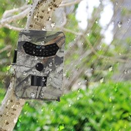 Camera Wildlife NZ - Gosear Trail Camera 1080P 110 Degree PIR HD Hunting Scouting Camera with 120 Degree Detecting Range for Home Security Wildlife