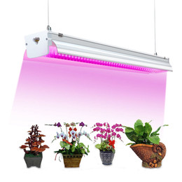 Discount plug flower led lights 2ft 300w 4ft 500W Plant Grow Light -T5 LED Integrated Lamp Fixture Plug and Play - Full Spectrum for Indoor Plants Flowe