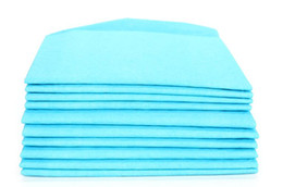 $enCountryForm.capitalKeyWord UK - S Super Absorbent Pet Non-woven fabric Diaper Pad New-born Dog & Dog Mother Training Pee Pads Healthy Clean Wet Mat