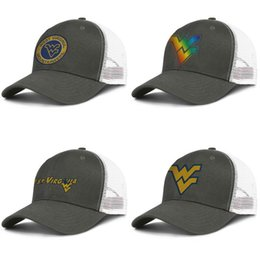 trees cap NZ - Mens Mesh Caps West Virginia Mountaineers basketball logo Womens Popular Ventilation Snapback Round Logo Gay pride rainbow Coconut tree