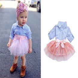 Long Pink Tutu Australia - Newborn Toddler Baby Girl Dress Striped Long Sleeve Shirt + Pink Mesh Skirt Tutu Lace Dress Clothes Outfit