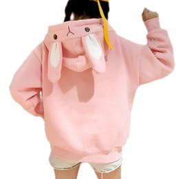 $enCountryForm.capitalKeyWord Australia - Kawaii Sweet Rabbit Ears Hooded Sweatshirt Women Harajuku Hoodies Loose Embroidery Cartoon Tracksuits Pullovers Moletom Plus Xxl