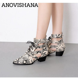 snake boots 2019 - ANOVISHANA Low Heels Casual Snake Print Hollow Out Summer Boots Pointed Toe Lace Up Ladies Shoes Women Ankle Boots Botte
