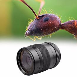 60mm f 2.8 2:1 Super Macro Manual Fixed Focus Lens for Canon 700D 750D 760D 800D 77D 6D 7D Camera Lens on Sale