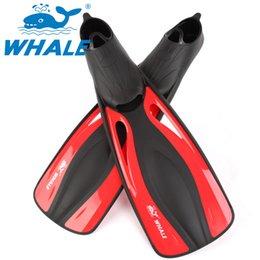 Uomo donna nuoto pinne allenamento unisex diving flipper Europa America taglia grande pinne attrezzatura subacquea scarpe zyqs01 in Offerta