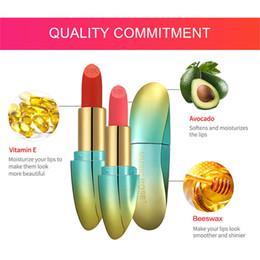 $enCountryForm.capitalKeyWord Australia - 1 Pcs Women Matte Lipstick Waterproof Long Lasting Moisturizing Velvet Lipstick 669