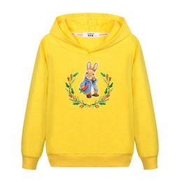 Cartoon Rabbit Hoodies UK - 2018 Cartoon Peter Rabbit Sweater baby girl's Cute cotton casual hoodie Kids Fashion autumn winter clothes boys child 3-14T coat