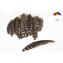 Chinese  wihte and black Turkey Pheasant Feathers Premium 10-15cm 4-6inch craft unique colorful patterned real feathers manufacturers