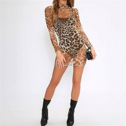 sexy snakeskin dresses Australia - Sexy 2019 Turtleneck Mesh Sheer See Through Bodycon Dress Women Long Sleeve Summer Snakeskin Print Short Party Mini Pencil Dress