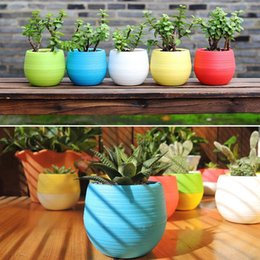 Plants Decorative NZ - Mini Colourful Round Plastic Plant Flower Pots Home Office Decor Planter Decorative Crafts In The Bedroom, Living Room C19041901
