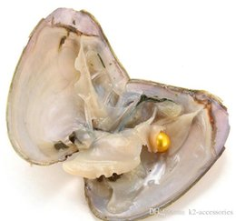 akoya pearls wholesale UK - LEMON Fancy Gift Akoya High quality cheap love freshwater shell pearl oyster 5-7mm pearl oyster with vacuum packaging