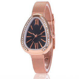 Glasses Trade Australia - 2019 crossover new small serpentine ladies exquisite mesh belt watch foreign trade hot triangle Rome