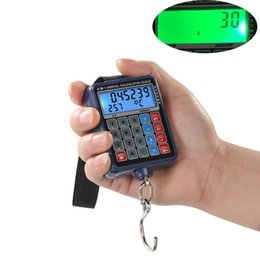 Chinese  50kg 10g Digital Calculator Scale Handheld Portable Mini Electronic Balance Hanging Hook Pocket Scale Lage Weight Scale for Fishing manufacturers