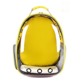 Ingrosso Hot Portable Space Fashion Cat Pet Backpack Dog Carrier Escursionismo Trasparente Forniture per viaggi multifunzionali trasparenti