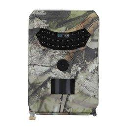 Cámara de caza al aire libre 12MP Detector de animales salvaje Trail HD Monitoreo impermeable de control de calor de infrarrojos Visión nocturna en venta