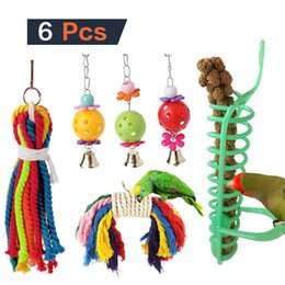 $enCountryForm.capitalKeyWord NZ - 6 Paper Set Parrot Toys Group Combine Parrot Small Favour And Put Sb. In Important Position Product Take Food Toys Foraging Bird Toys