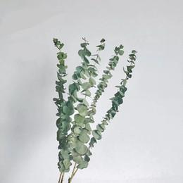 Venta al por mayor de Plantas falsas verdes Plantas de hoja de eucalipto grande Material de la pared Hojas artificiales decorativas para el hogar Tienda Jardín Decoración del hogar
