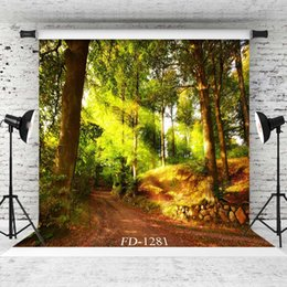 $enCountryForm.capitalKeyWord Australia - forest in sunlight Vinyl photography background for children kids baby shower backdrop photocall