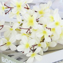 $enCountryForm.capitalKeyWord NZ - 1 Bouquet 6 Branches 5cm Artificial Orchid Flower Table Decoration Flower DIY for Wedding Party Home Decorative Flowers