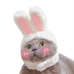Wholesale white rabbit cosplay for sale – halloween The Cat Hair Ornaments Cute Rabbit Drag Hat Garfield Rabbit Ears For People And Pet Cosplay Accessories The Free Size Ornaments