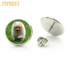 pet dog glasses NZ - TAFREE trendy cute dog photo jewlry lovely pet dog lover gifts fashion women glass cabochon stud earrings high quality D1296