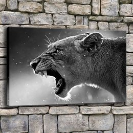 Canvas Art Prints For Sale NZ - Hot Sale Canvas Painting Home Decor 1 Piece Roaring Leopard Poster Prints Animals Lion Pictures For Living Room Wall Art