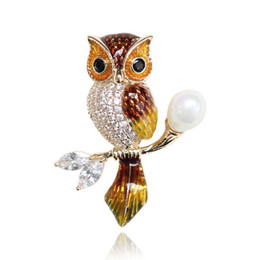 African Oils Wholesale Australia - High Quality Owl Animal Shape Crystal Drop Oil Brooches For Women Girl