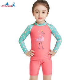 Pool Suit Australia - heap Children's Two-Piece Suits DiveSail 3-10Y KIDS Girls Swimwear Swimsuit Swimming separately two pieces suit Bathing UPF 50+ Long Slee...