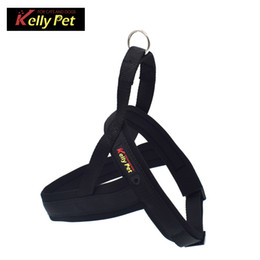 Color Hose Australia - Hot style pet dog chest strap traction cord explosion-proof hose pet supplies