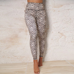 Leopard hot pants online shopping - Leopard Womens Leggings Yoga Pants INS High Waist Pants Quick drying Gym leggings Womens Hot Clothes