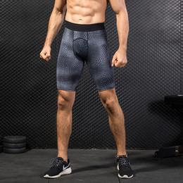 $enCountryForm.capitalKeyWord NZ - Summer Running Shorts Men Quick Dry Training Short Crossfit Short Pants Compression Tights Gym Sport Shorts Leggings Underwear