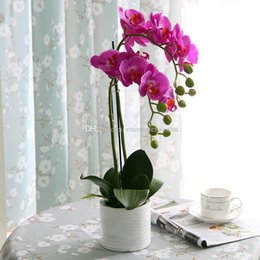 $enCountryForm.capitalKeyWord Australia - European Simulated Flower Art Suit for Potted Phalaenopsis Flower Decoration in Living Room, Flower Point, Table and Bonsai Decoration