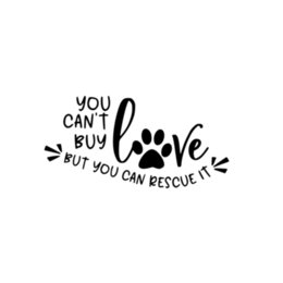 heart products NZ - You Can't Buy Love, But You Can Save It Vinyl Car Packaging Accessories Product Decal Warm Heart Quotation